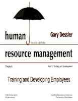 Dessler ch 8 training and development