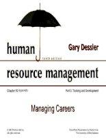 Dessler ch 10 managing careers