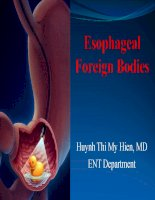 Esophageal foreign bodies