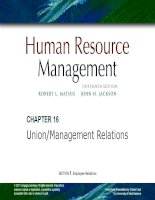 Human resrouce management 13th  mathis jacson chapter 016