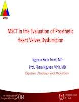 Chụp cắt lớp xoắn ốc đa lát cắt trong đánh giá rối loạn chức năng van tim nhân tạo