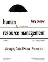 Dessler ch 17 managing global human resources