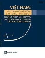 Việt nam phát triển một hệ thống bảo hiểm xã hội hiện đại   những thách thức hiện tại và các phương án lựa chọn cho cải cách trong tương lai