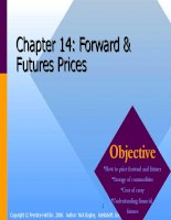 Corporate finance chapter 014 forward and futures prices