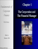 Fundamentals of corporate finance 5e mcgraw chapter 01