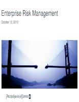 ERM  enterprise risk management pricewaterhousecoopers