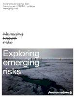 Extending enterprise risk management to address emverging risks