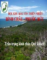 Slide Thuyết trình Khu bảo tồn thiên nhiên Bình Châu  Phước Bửu