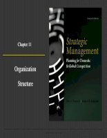 Strategic management planning for domestic and global competition 14th ed  pearce robinson chapter 11