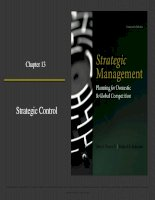 Strategic management planning for domestic and global competition 14th ed  pearce robinson chapter 13