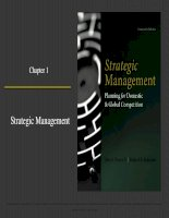 Strategic management planning for domestic and global competition 14th ed  pearce robinson chapter 1