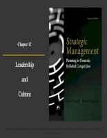 Strategic management planning for domestic and global competition 14th ed  pearce robinson chapter 12