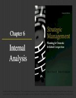 Strategic management planning for domestic and global competition 14th ed  pearce robinson chapter 6