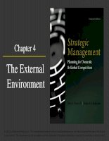 Strategic management planning for domestic and global competition 14th ed  pearce robinson chapter 4