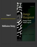 Strategic management planning for domestic and global competition 14th ed  pearce robinson chapter 9