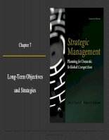 Strategic management planning for domestic and global competition 14th ed  pearce robinson chapter 7