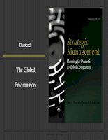 Strategic management planning for domestic and global competition 14th ed  pearce robinson chapter 5