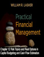 Practical financial management  lasher 7th ed chapter  012