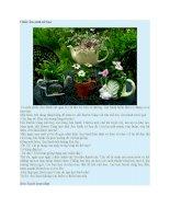 Truyện kể mầm non chiếc ấm sành nở hoa