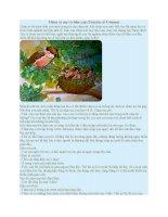 Truyện kể mầm non chim sẻ mẹ và bốn con