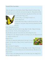 Truyện kể mầm non  truyện kể ba cô bạn bướm