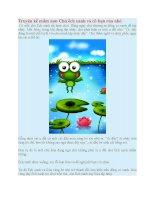 Truyện kể mầm non chú ếch xanh và cô bạn rùa nhỏ