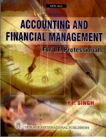Accounting and financial management for IT professional