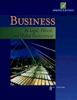 Business it legal ethical and global environment 8th edition