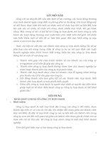 bài tập nhóm luật thương mại 1