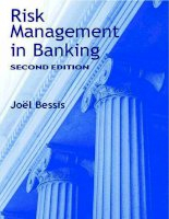 RISK MANAGEMENT IN BANKING 2nd ed bessis