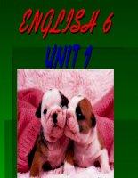 Unit 1 greetings (9)