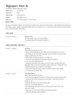 TopCV Mẫu CV xin việc dành cho Nhân viên Kinh doanh (Sales)