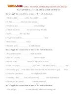 Bài tập Tiếng Anh lớp 8 về các thì trong Tiếng Anh có đáp án