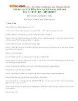 Giải bài tập SGK Tiếng Anh lớp 10 Chương trình mới  Unit 7: CULTURAL DIVERSITY