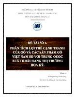 Phân tích lợi thế cạnh tranh của gỗ và các sản phẩm gỗ Việt Nam so với Trung Quốc xuất khẩu sang thị trường Hoa Kỳ