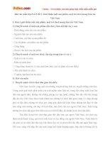Bài văn mẫu lớp 8 số 5 đề 6: Giới thiệu một sản phẩm, một trò chơi mang bản sắc Việt Nam