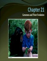Lecture AP Biology  Chapter 21 Genomes and their evolution