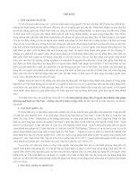 HS_Nguyễn T.Kiểm_Các hình phạt áp dụng đối với người chưa thành niên phạm tội trong luật hình sự VN những vấn đề lý luận và thực tiễn xét xử