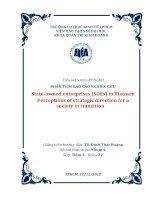 PHÂN TÍCH BÁO CÁO NGHIÊN CỨU Stateowned enterprises (SOEs) in Vietnam Perceptions of strategic direction for a society in transition