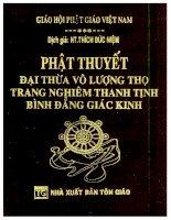 Phật thuyết đại thừa vô lượng thọ kinh