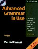 advanced grammar in use 2nd ed