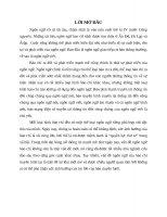 ĐẶC điểm NGÔN NGỮ báo CHÍ TRUYỀN HÌNH tiểu luận cao học