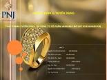 Thuyết trình môn quản trị nhân lực báo cáo hoạt động quản trị nguồn nhân lực của công ty cổ phần vàng bạc đá quý phú nhuận