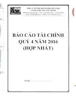 BAO CAO TAI CHINH QUY 4 NAM 2016   HOP NHAT