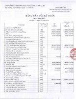 Báo cáo tài chính Quý 4 năm 2016 BCTC quy 4 2016