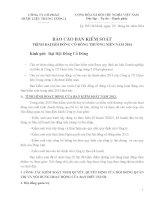 5.Bao cao BKS nam 2014 phytopharma - 16.4.2014