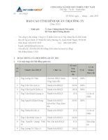 20130128 DXG Bao cao tinh hinh quan tri cong ty nam 2012