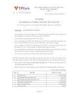 05. bdh to trinh thong qua bao cao tai chinh nam 2016 v2