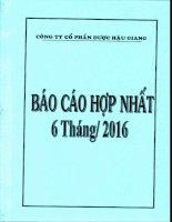 DHG BCTC quy 2.2016   HN1