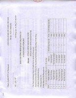 Báo cáo hoạt động quản trị Công ty 6 tháng đầu năm 2015|CÔNG TY CỔ PHẦN DỊCH VỤ VẬN TẢI VÀ THƯƠNG MẠI